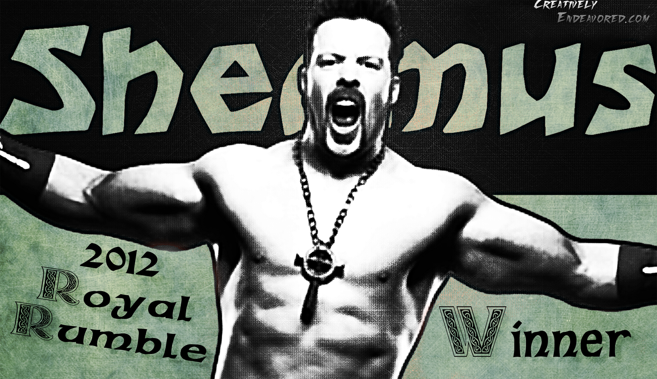 http://creativelyendeavored.files.wordpress.com/2012/01/sheamus-2012-rr-winner.jpg