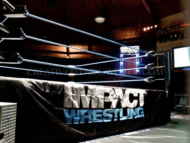 TNA House Show - 04