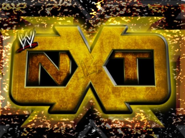 NXT Logo - 2013
