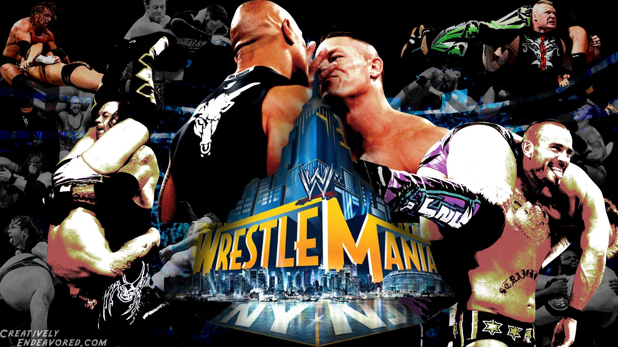 The Stars Of WrestleMania 29